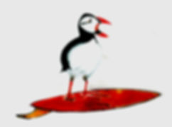 surfing bird.jpg