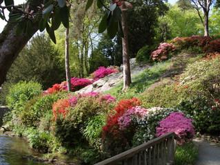 Bodnant Gardens!
