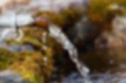 wassertag_fountain-752450_640.jpg