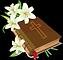 Estudio Biblico.png