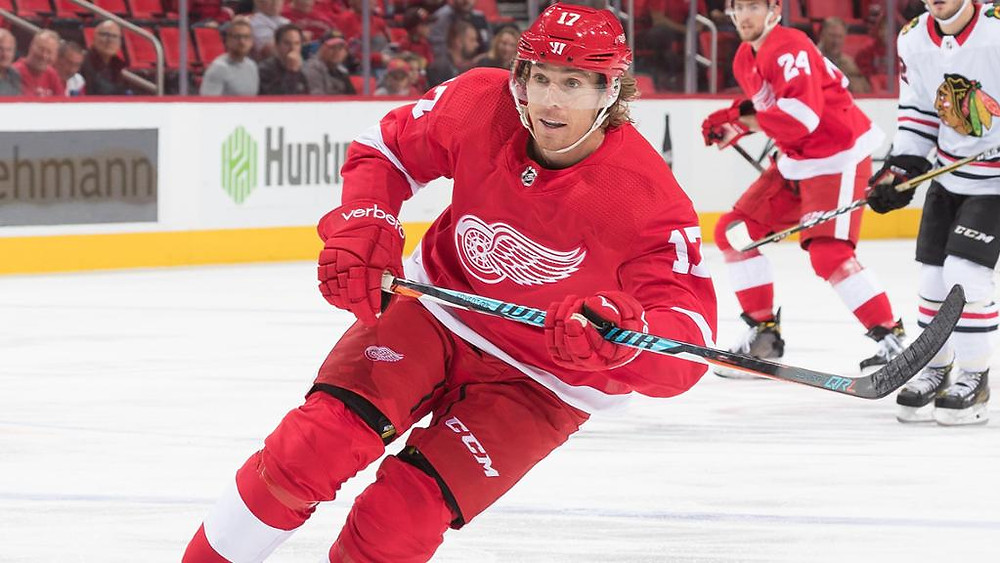 The Detroit Red Wings recently signed left wing David Booth to a one-year contract. (Photo courtesy NHL.com)