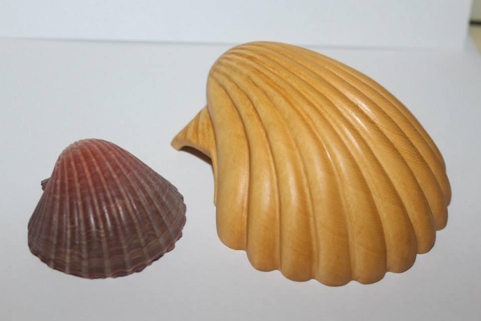 Huon pine shell