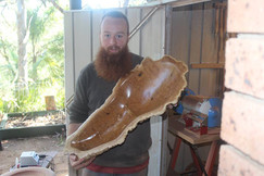 Brown mallee burl bowl