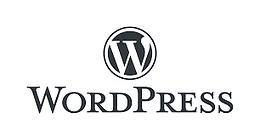 wordpres editor