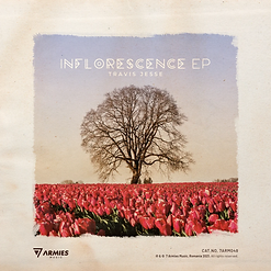 Travis Jesse - Inflorescence.jpeg