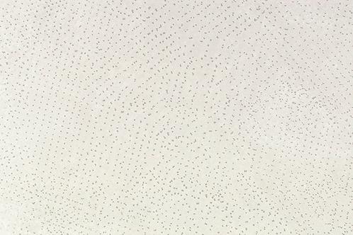 Artech White