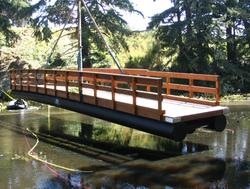Bridge over happy water (5)