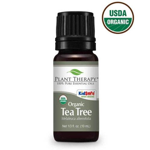 Tea Tree ORGANIC