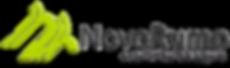 Logo psd Novo RUMO NOVO Final 10  07  20