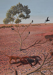 Harsh country by Hugh Shultz