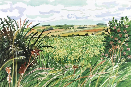 David Hockney, A Gap in the Hedgerow (from Midsummer: East Yorkshire), 2004