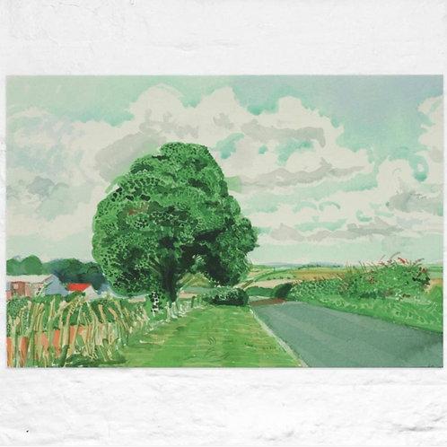David Hockney, Road and Tree Near Wetwang ( from Midsummer: East Yorkshire) 2004