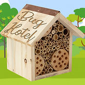 Build a Bug Hotel.jpg