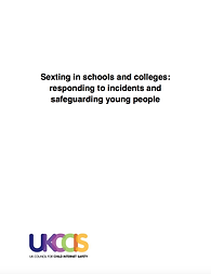 Sexting in Schools and Colleges - Respon