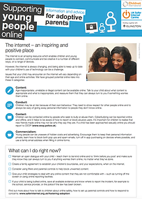 Supporting Young People Online for Adopt