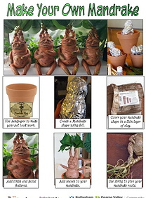 Make Your Own Mandrake.png