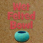 Wet Felted Bowl.jpg