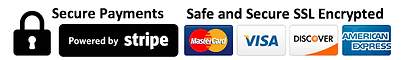 secure Payments logo.png