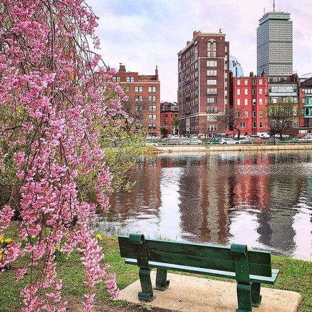 70 FREE things to do in/around Boston this week