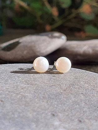 Topos Perla Blanca pequeños