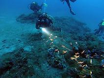 Cinquini - 40 mètres- Club de plongée Bastiais