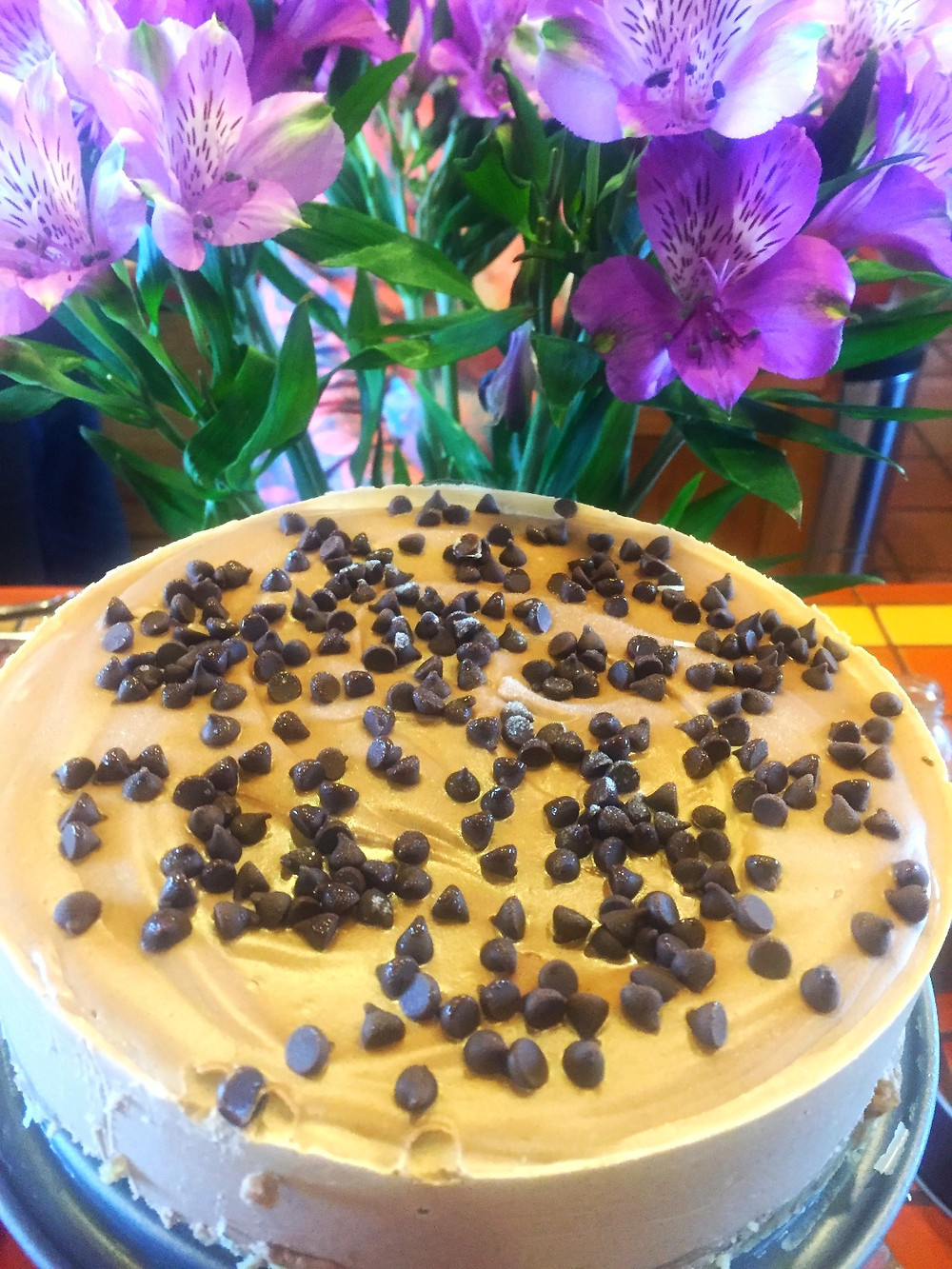 chocolate cashew cheesecake, paleo
