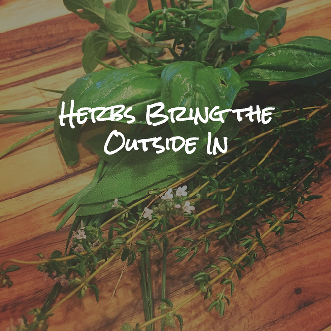 The Truth About Herbs