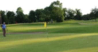 Golf Carton House