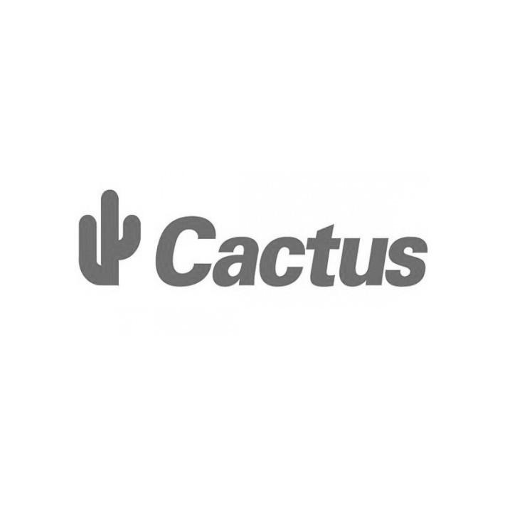 cactus_logo-e1312755431954 Kopie.jpg