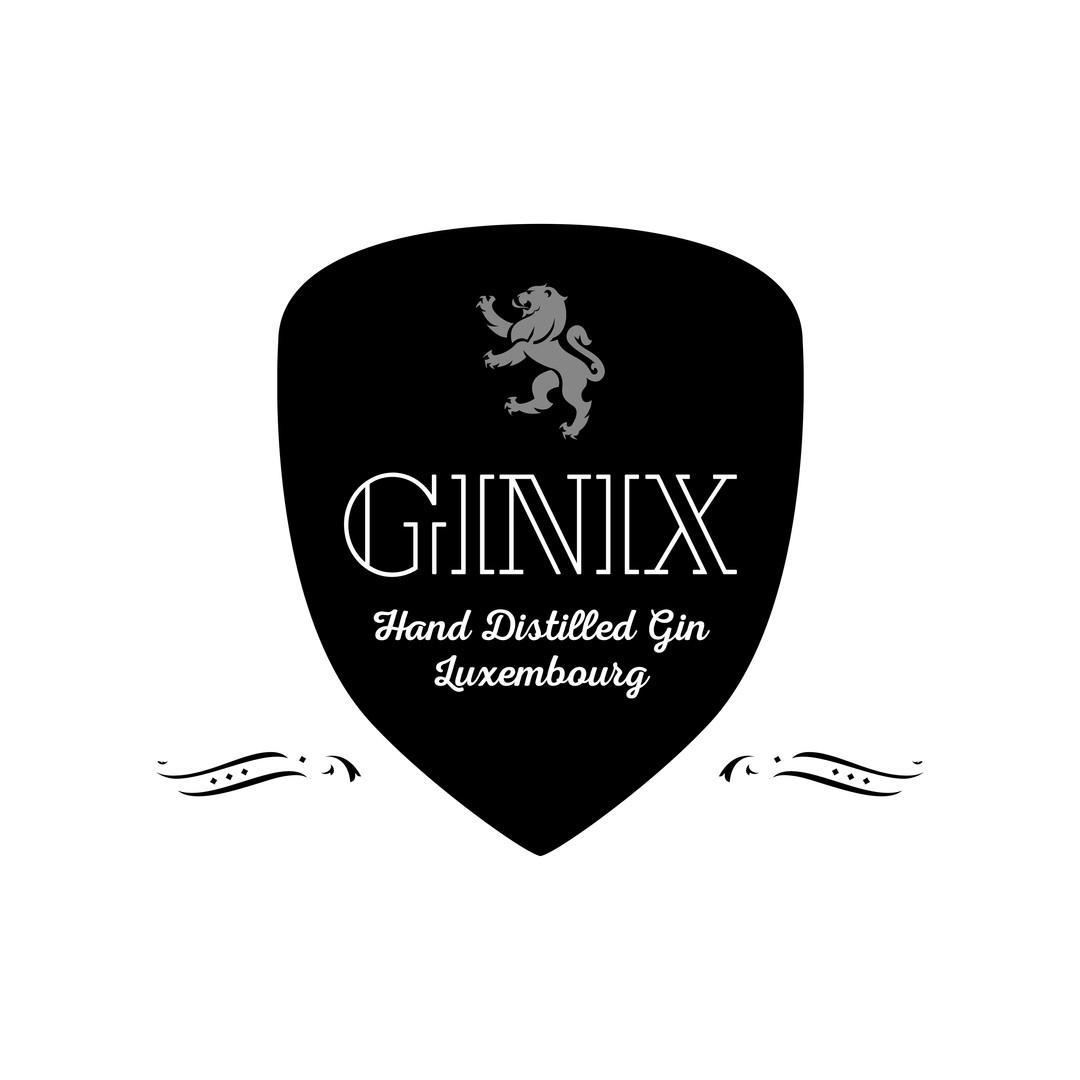 Ginix_logo_contourblanc Kopie.jpg