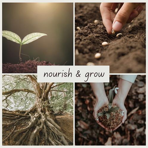 June Box   Recent Release   Nourish & Grow
