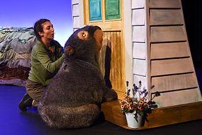 20170317-Diary-of-a-Wombat-214.jpg