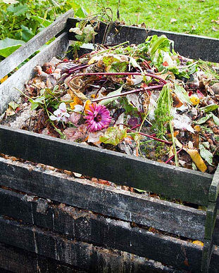 how-to-make-compost-heap.jpg