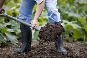 bury compost.jpg