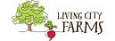 6-logo-lcf.png