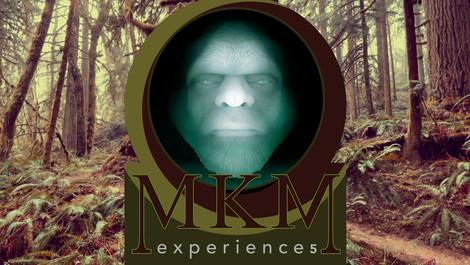 Experience5.jpg