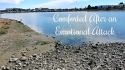 Comforted