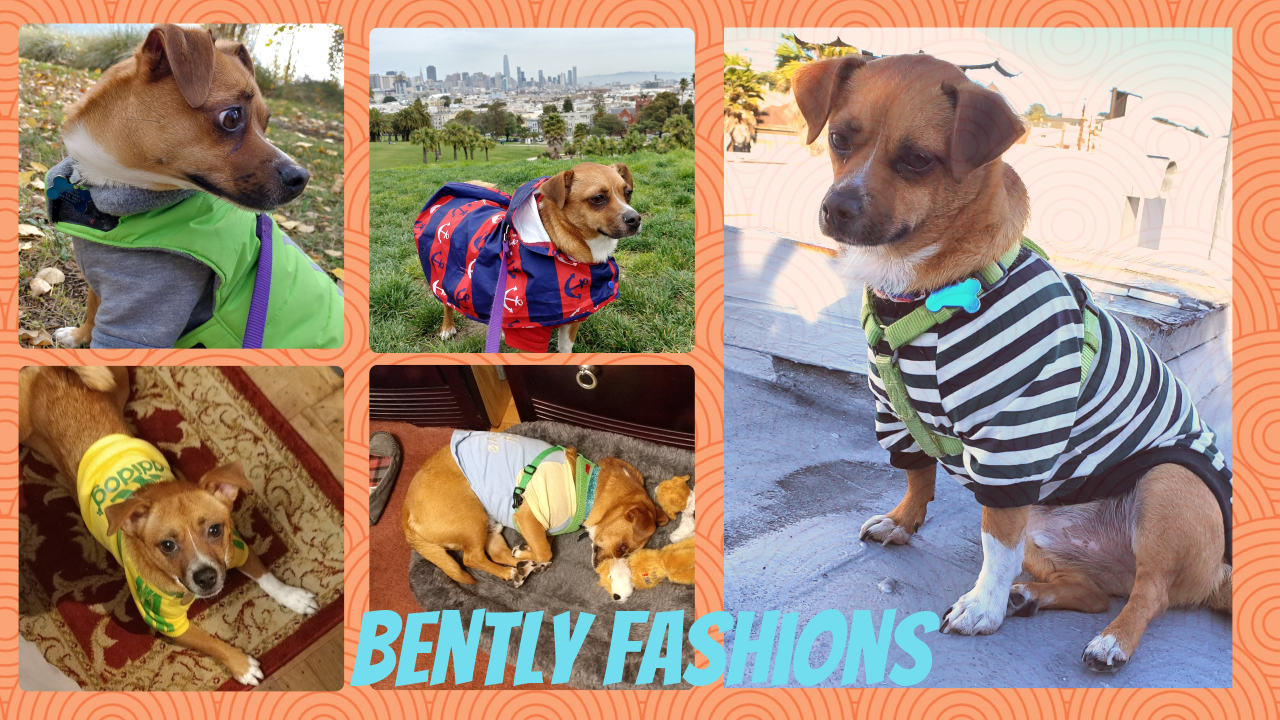 Bently Models Outfits