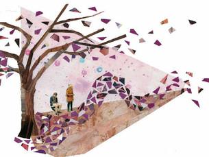 Conceptual garden collage