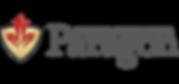 paragon-logo-grey.png