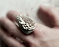 fungi ring