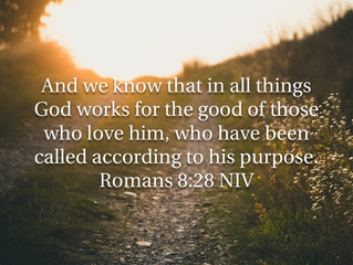All For His Purpose