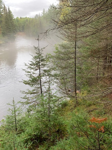 Foggy North Branch-Mike Inman