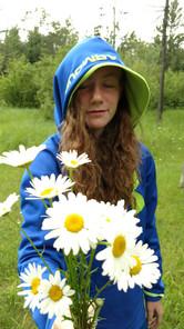 Daisies-Julia Hulka