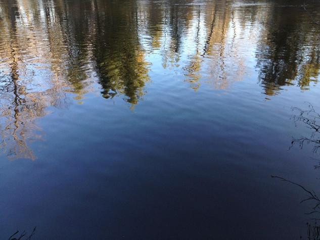 Reflections-Jen Van Dam.jpg