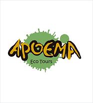 logo_apoema_jornada_do_cliente.png