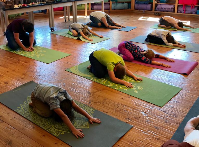 Yoga Demonstration 3
