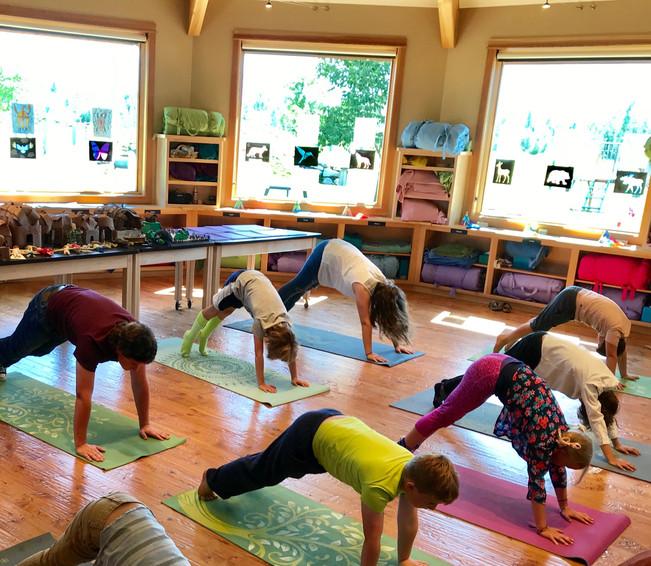 Yoga Demonstration 7-19-19