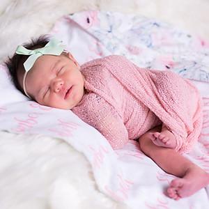Kimber [Newborn]