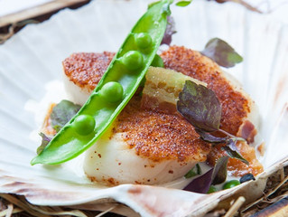 Edinburgh Evening News 14 - Pan Roasted Scallops with Peas and Bacon